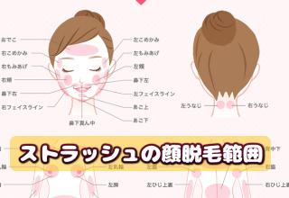 ストラッシュの顔脱毛範囲の説明図